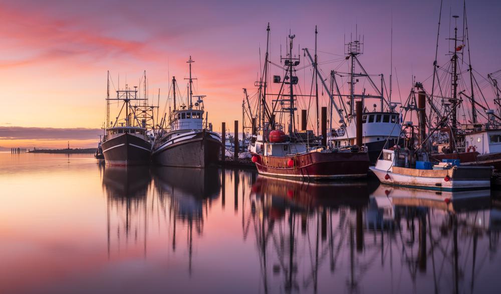 contributo per pesca